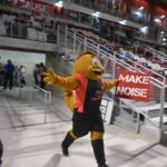 Meet Sting: Soccer's Most Subversive Mascot