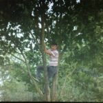 Man climbs tree to watch Stoke-Man City