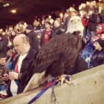 Crystal Palace mascot absent from matches due to bird flu fears