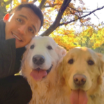 Arsenal attempt to pacify Alexis Sanchez with dog sweaters